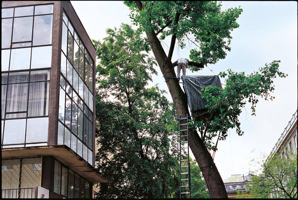 """Paweł Althamer, """"Domek na drzewie"""", 2001, fot. dzięki uprzejmości Fundacji Galerii Foksal"""