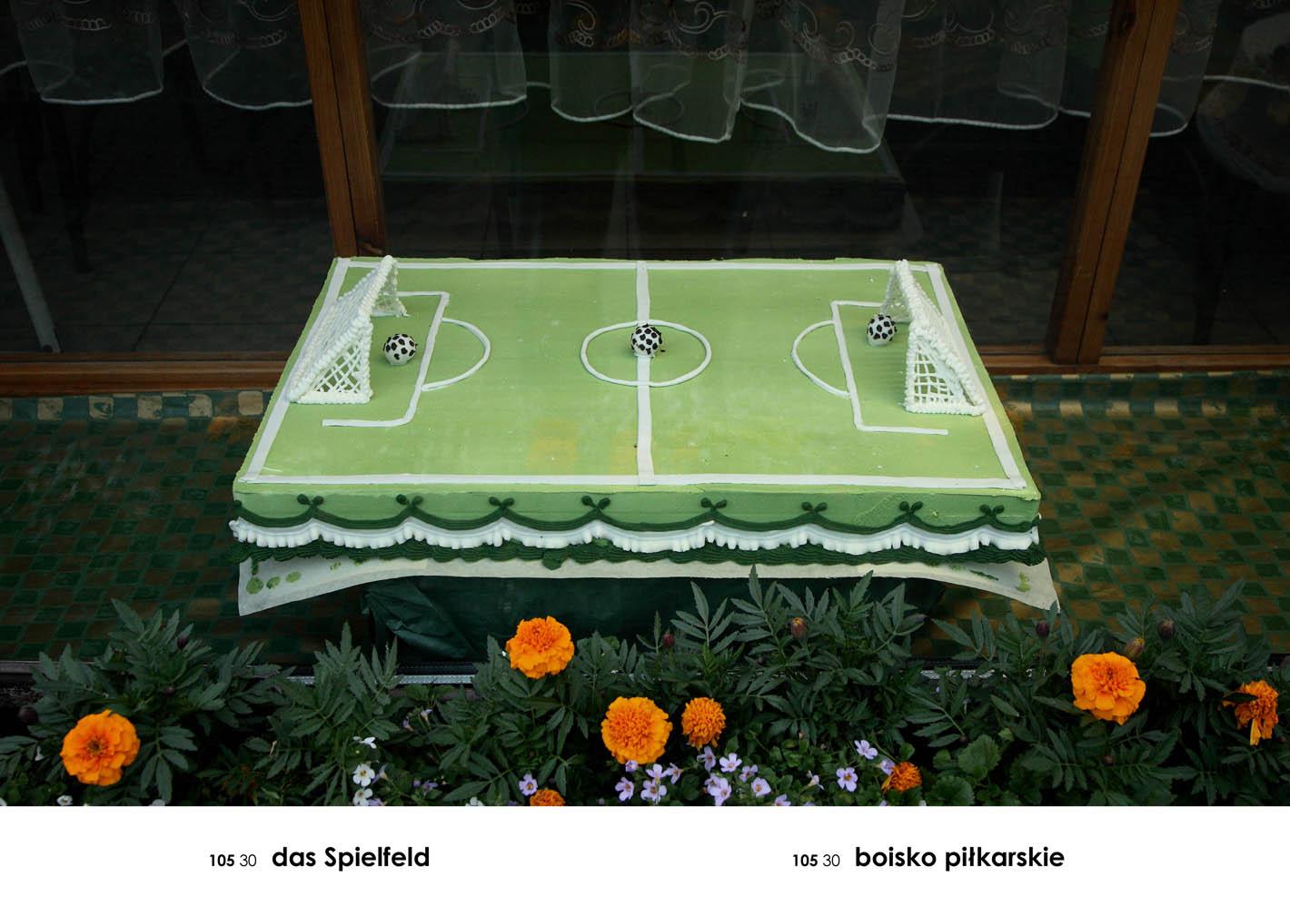 """""""Boisko piłkarskie"""", z cyklu """"A-Z. (Gabloty edukacyjne)"""", fot. Andrzej Tobis"""