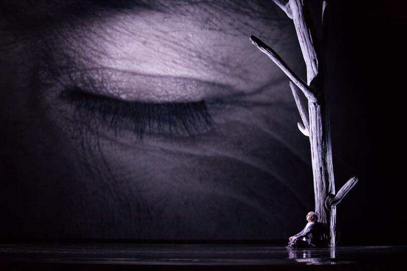 Abbas Bakhtiari (Stary Prospero), fot. E. Krasucka/Teatr Wielki – Opera Narodowa