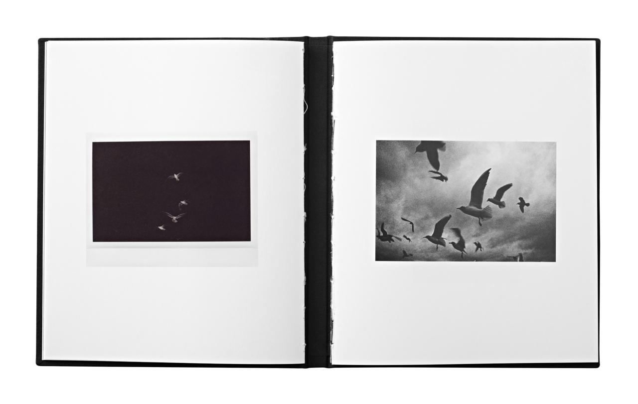 """Mateusz Sarełło, www.mateuszsarello.com, """"Swell"""", rozkładówka książki, fot. dzięki uprzejmości artysty"""