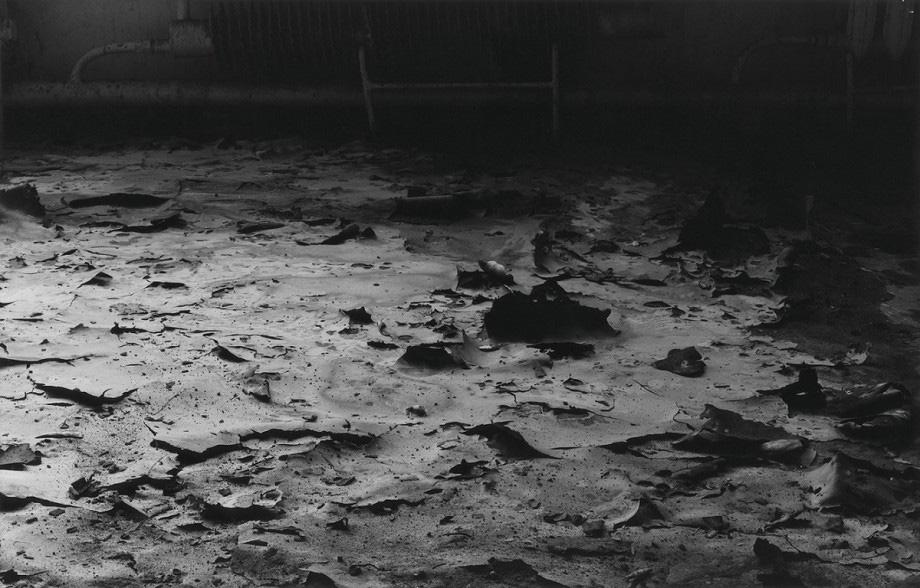 """Mikołaj Smoczyński, """"The secret performance II (Fields of Transition)"""", 1985-87, fotografia, fot. z Kolekcji MOCAK-u"""