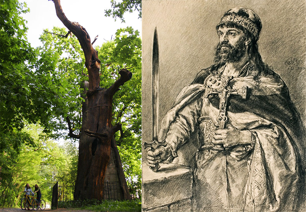 The Mieszko I Oak, photo: Jan Zamoyski / AG. Mieszko I, a drawing by Jan Matejko, photo: National Museum in Wrocław