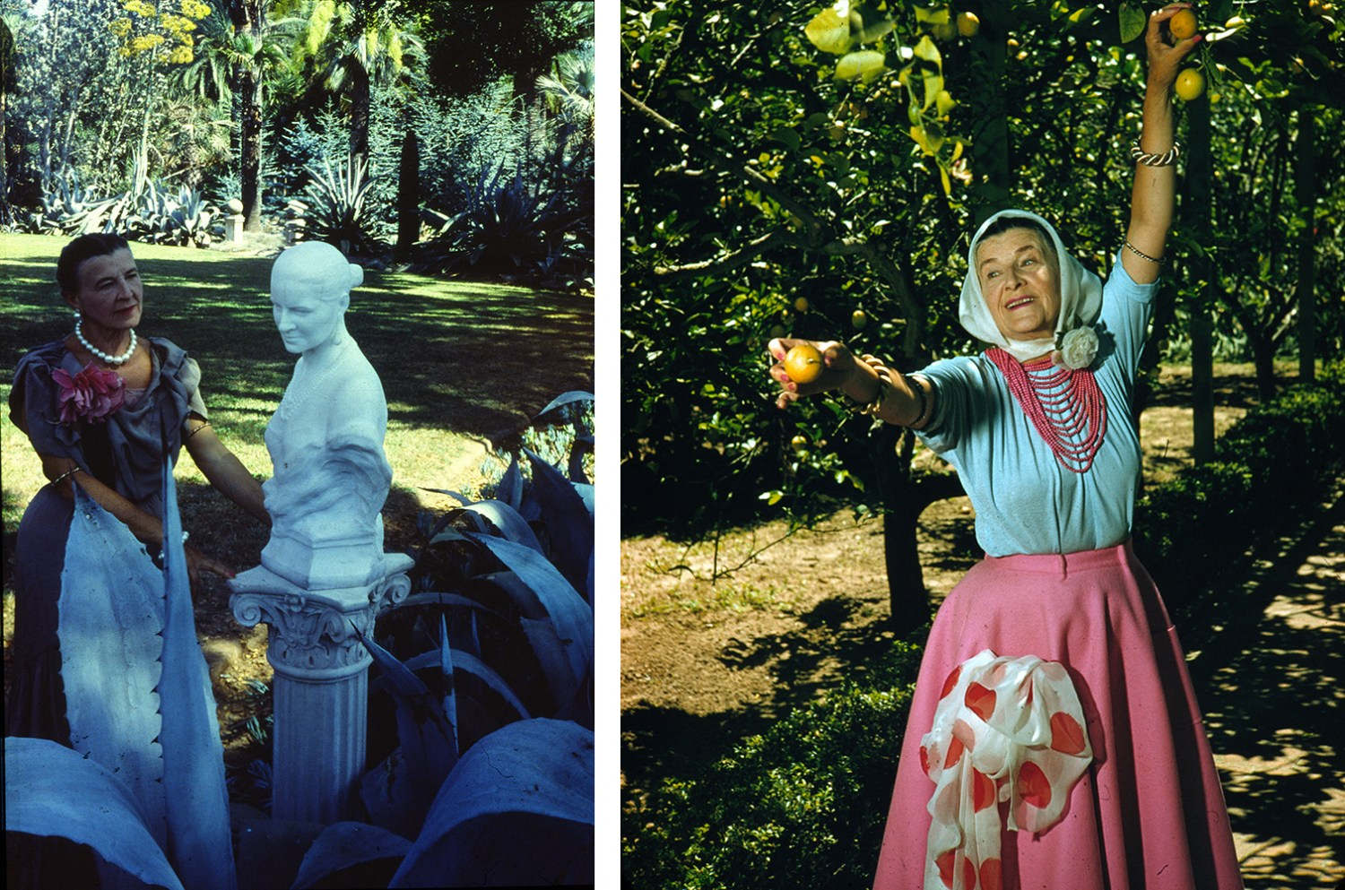 Ganna Walska in the blue garden 1958. Ganna Walska picking lemons, photo: courtesy Ganna Walska Lotusland