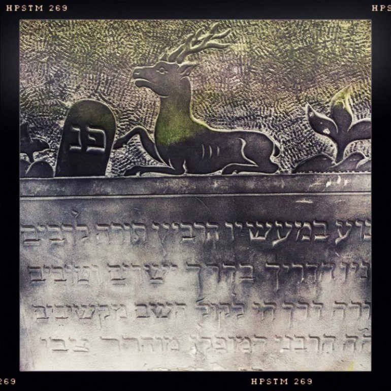 Detail of Matzevah in Jewish Cemetary, Photo: Paul Bargetto