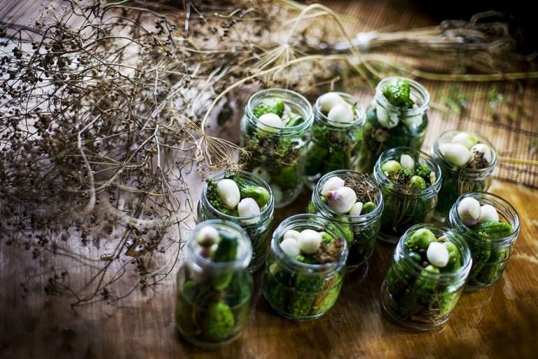 Kiszone ogórki, fot: Grażyna Makara