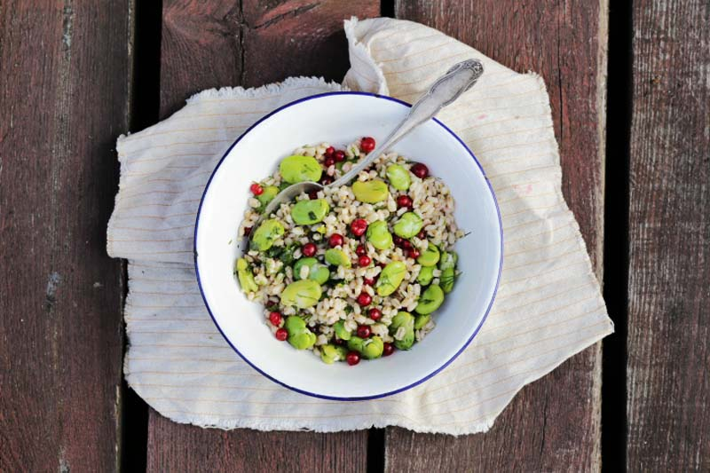 Fava beans salad with barley, red currants and dill made by Didem Senol, photo: IAM
