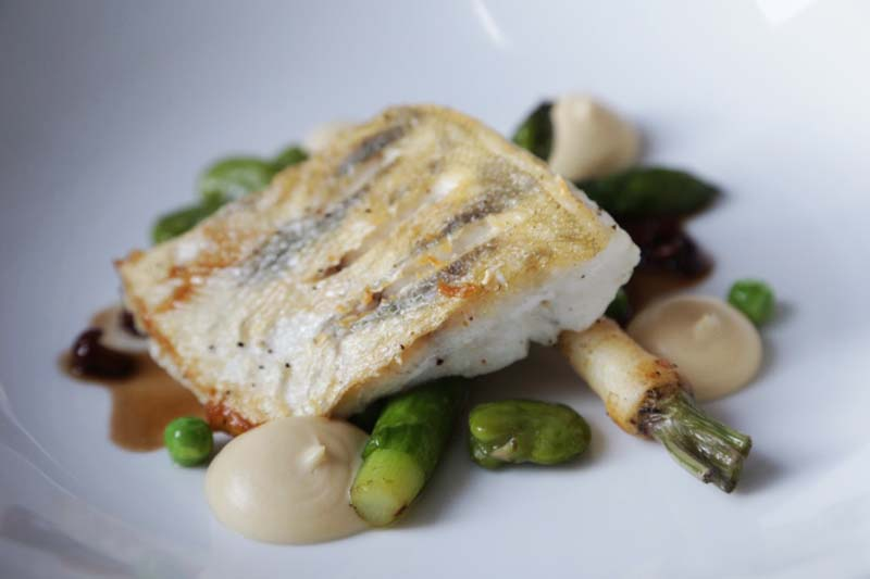 Main course: perch pike with with caramelised celery puree, asparagus with fava beans and chanterelle sauce, photo: IAM