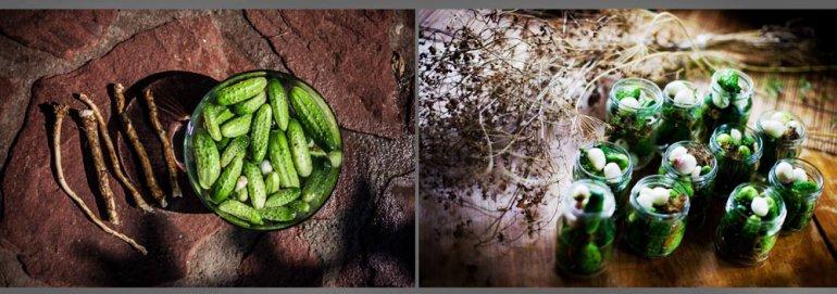 Pickles: photo: Grażyna Makara