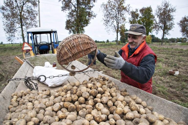 Polish farmer, photo: Andrzej Sidor / Forum