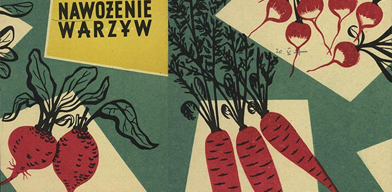 """Zbigniew Borna """"Nawożenie warzyw"""", Ministerstwo Przemysłu Chemicznego, [1957], fot. Cyfrowa Biblioteka Narodowa, www.polona.pl"""