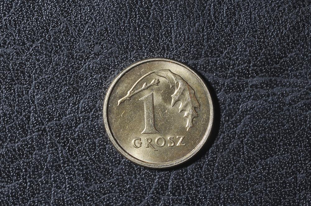 The last penny or grosz, photo: Jakub Ostałowski/Forum