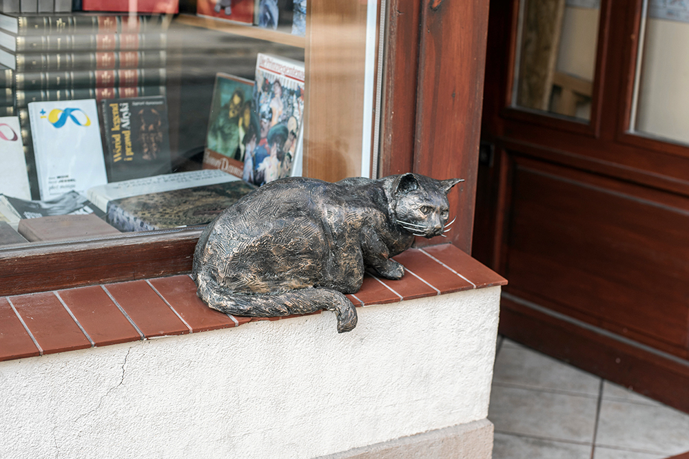 A monument to Dante the Cat in Wrocław, photo: Kornelia Głowacka-Wolf / AG