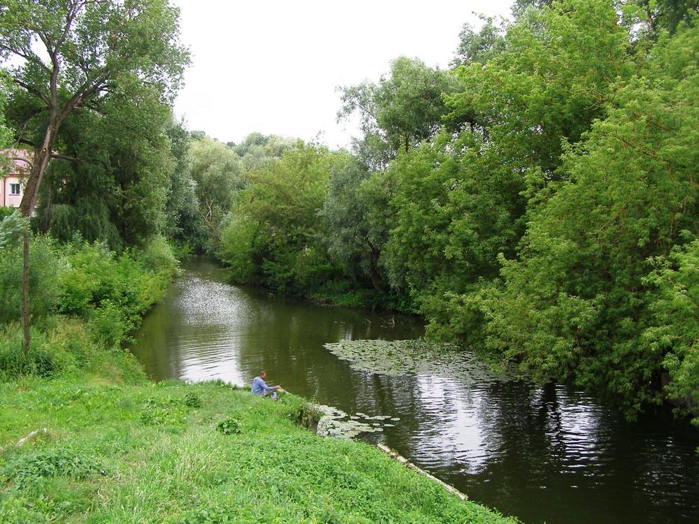 Річка Гнізна, липень 2017 року. Фото: Тетяна Федорів