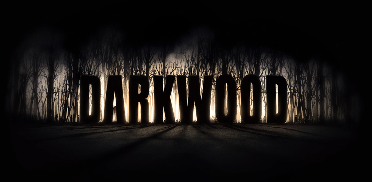 A sceenshot from the video game Darkwood, photo: promo materials
