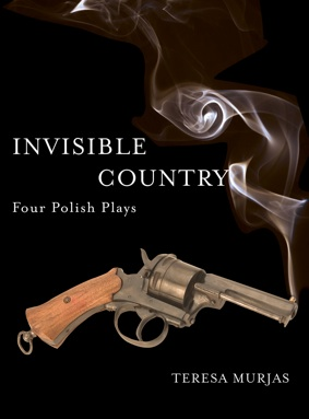 Invisible Country - Four Polish Theatre