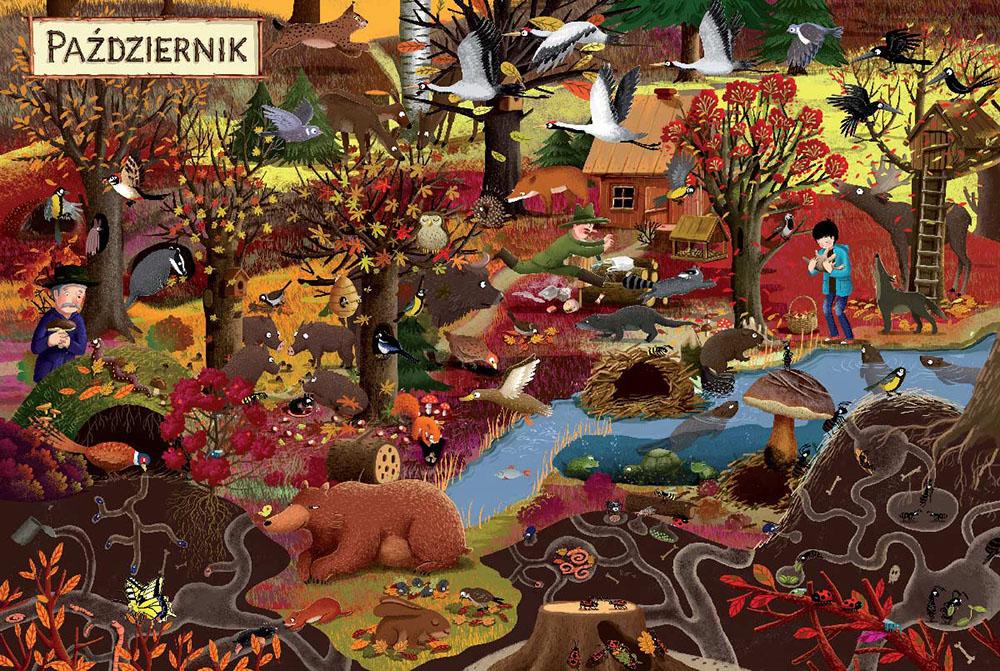 «Год в лесу», иллюстрации Эмилии Дзюбак, издательство Nasza Księgarnia