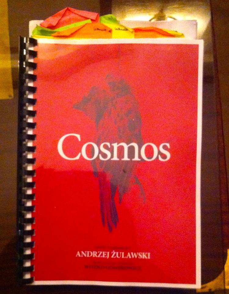 Andrzej Żuławski's script for Cosmos, source: Facebook/Andrzej Żuławski