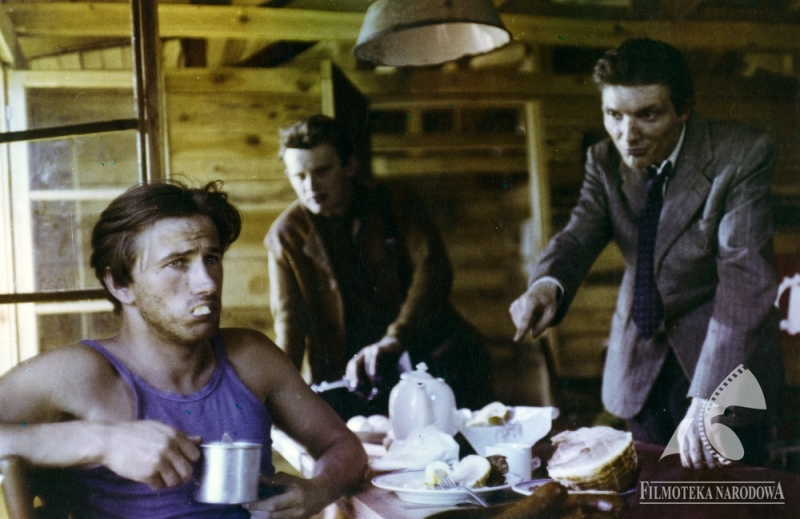 A Foreigner's Guide to Polish Cinema | Article | Culture pl