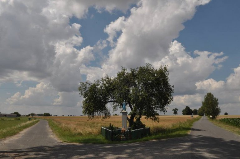 Village of Perzow, Greater Poland, photo: IAM