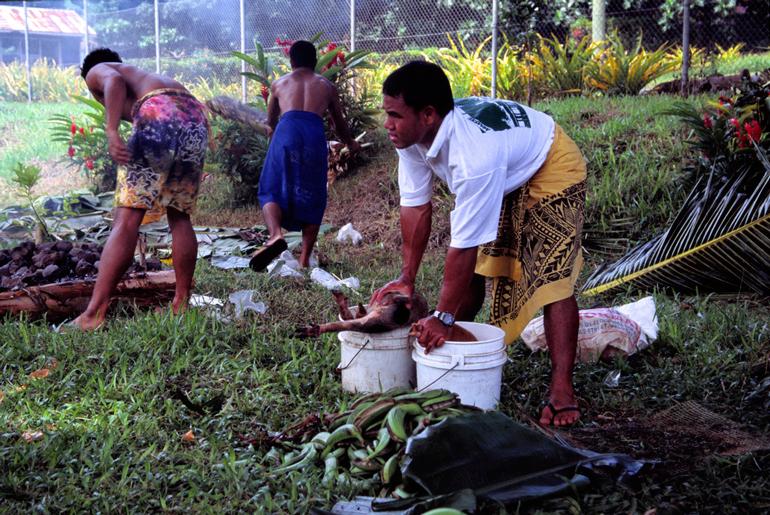 Życie na Samoa współcześnie, fot. Stefan Lins / Flickr.com / CC BY 2.0