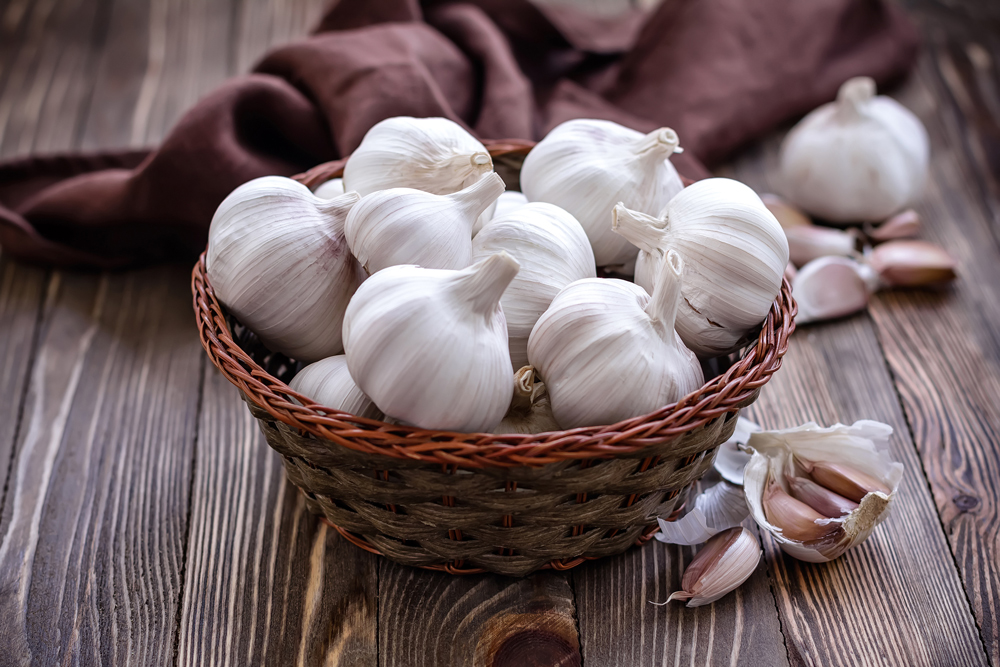 Garlic. Photo: Value / East News