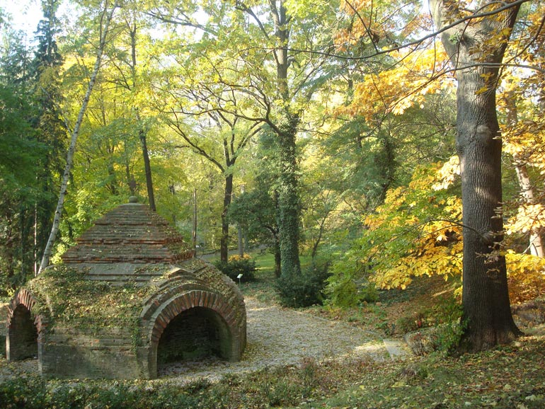 Picture from the University of Warsaw Botanical Garden. Photo courtesy of the Warsaw Botanical Garden.