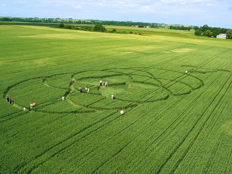 Famous pictograms in fields of Wylatowo, 27.06.2003, photo by Artur Chmielewski / Forum