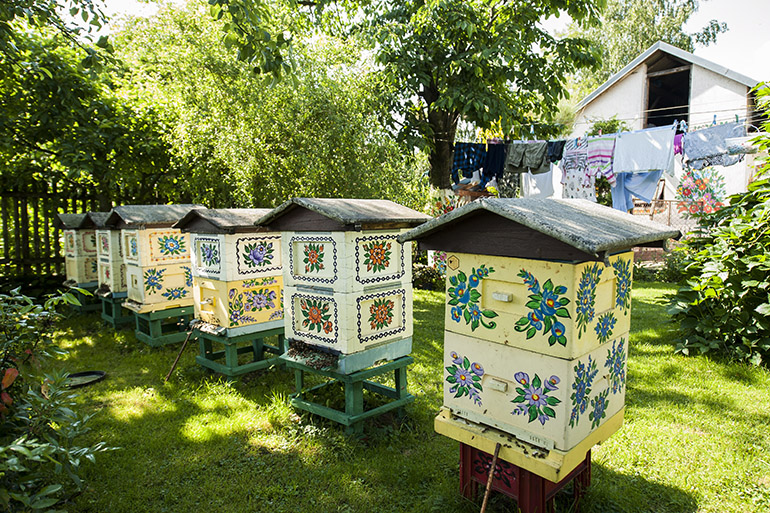Beehives in Zalipie, household of Helena Lelek, photo by Sebastian Kocon / Forum