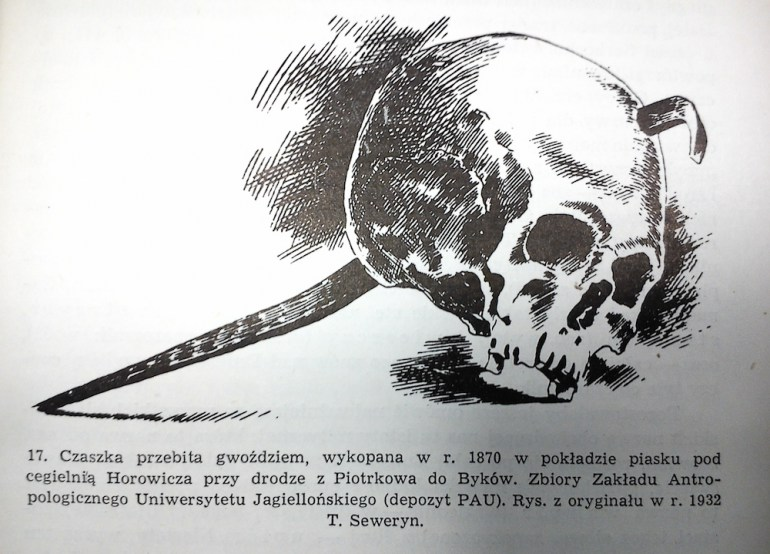 This skull pierced with a iron nail was found in 1870 not far from Piotrków Trybunalski; the artefact is in the Collection of Anthropological Department of the Jagiellonian University; drawing by T. Seweryn (1932). Source: reproduced from Kazimierz Moszyński's Kultura Ludowa Słowian