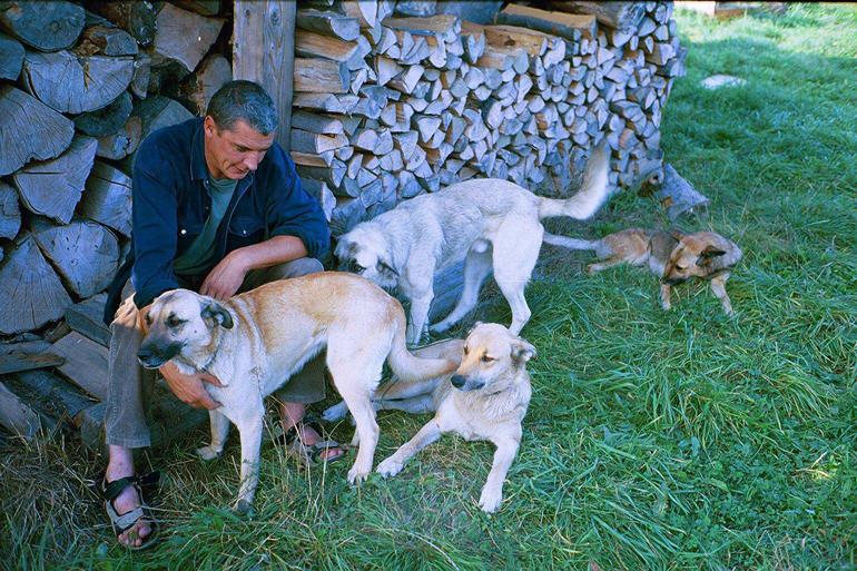 Andrzej Stasiuk z psami, fot. Piotr Janowski / Agencja Gazeta