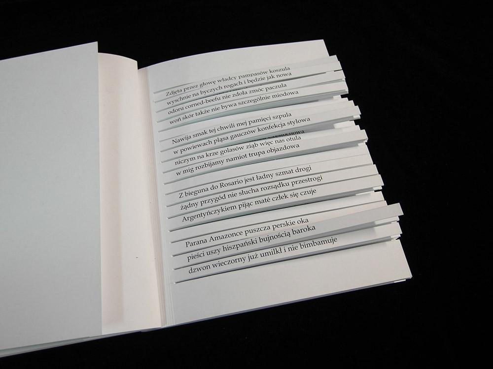 """""""Sto tysięcy miliardów wierszy"""" Raymonda Queneau, fot. materiały promocyjne"""