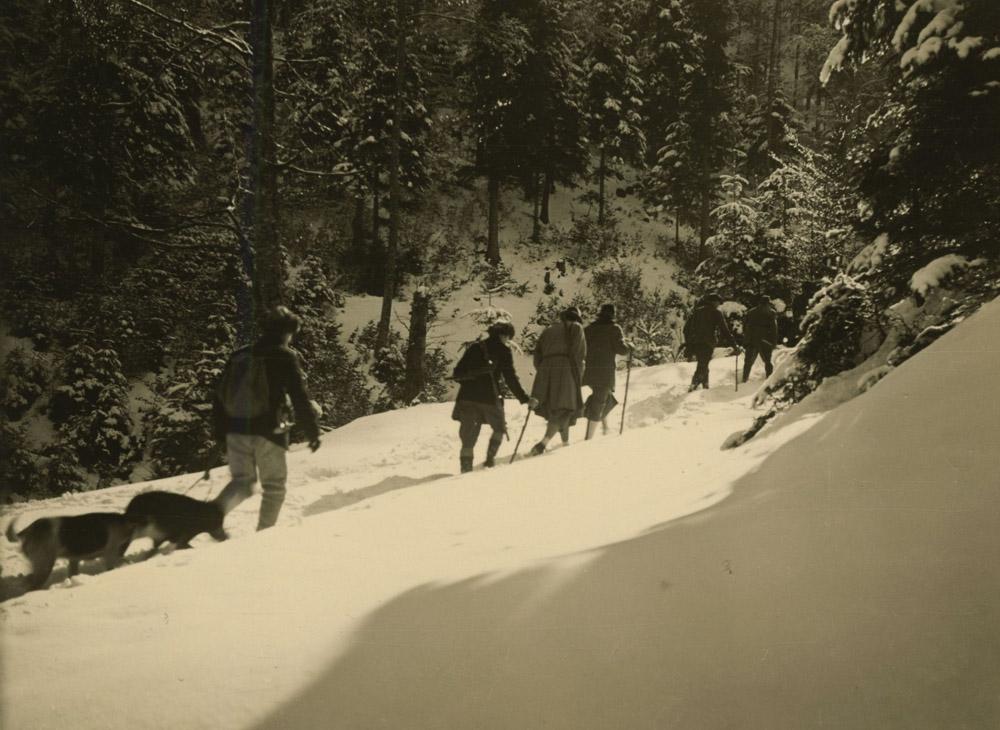 W drodze na polowanie do Życzanowa