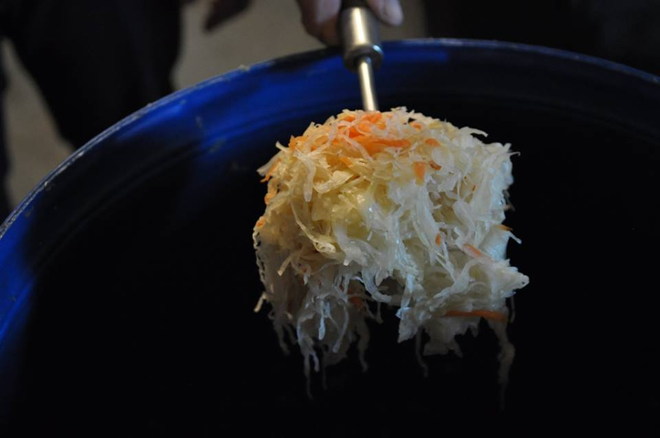 Cabbage pickled with carrot, photo: IAM