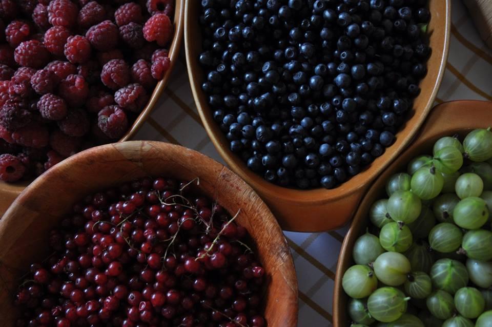 Raspberries, blueberries, red currants and gooseberries, photo: IAM
