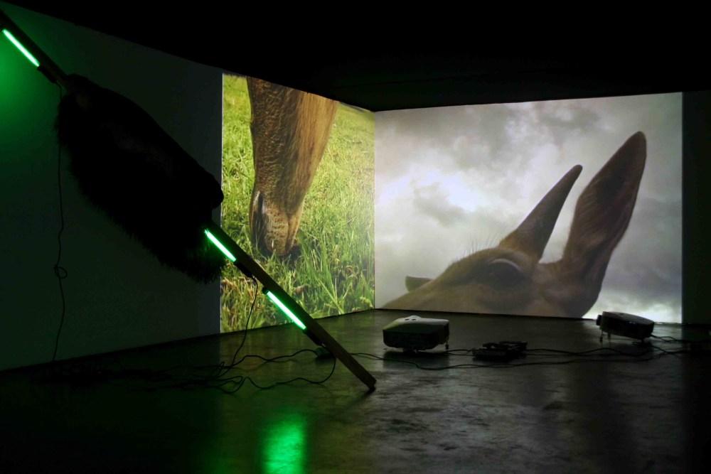"Angelika Markul, ""Casela"" (2006), Galerie Salvador Diaz, Madryt 2007 fot. Angelika Markul"