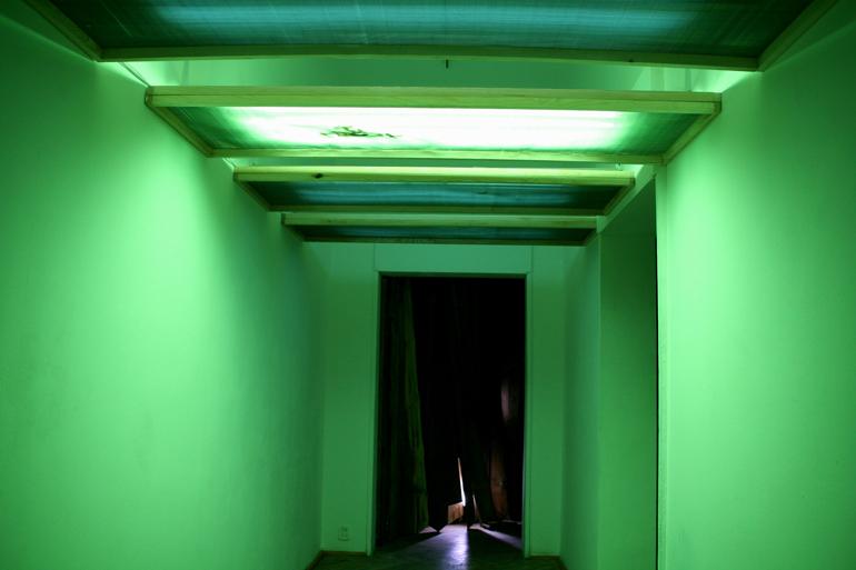 """Angelika Markul, """"Sen muchy"""", Galeria Foksal, 2006, fot. Jacek Gładykowski"""