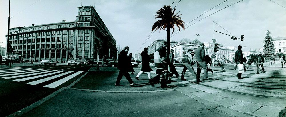 rajkowska palma csw_6212183.jpg