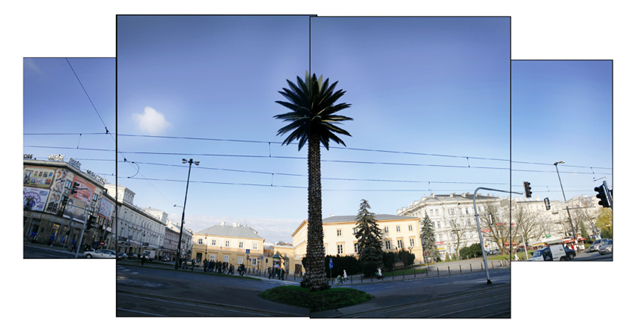 Joanna Rajkowska, A Palm on the de Gaulle's Square, photo: Artur Hojny / Forum