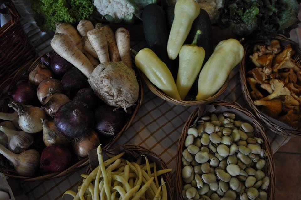 Selection of Polish vegetables and mushrooms, photo: IAM