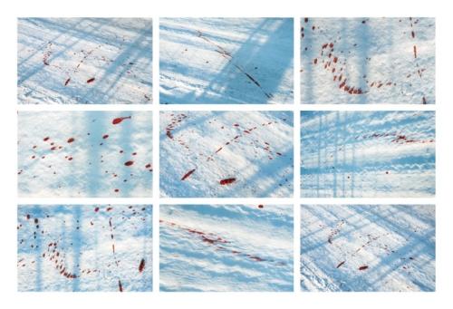 Road / Droga, colour photograph, 2003