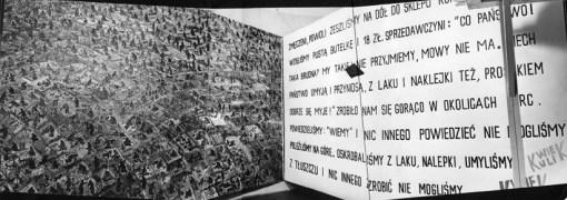 Owoce ziemi Dwurnika i Sztuka z nerwów KwieKulik, wystawa w PDDiU, 1975