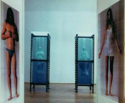 """""""Gesty"""" 1993, instalacja (dwa akwaria 210x60x60 cm, gipsowe figury Matki Boskiej i Jezusa, dwie fotografie kolorowe 130x60 cm, bielizna). Praca w depozycie Galerii Zderzak w Krakowie."""