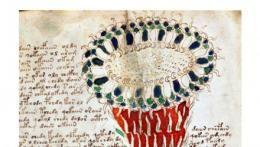 A page of the Voynich Manuscript
