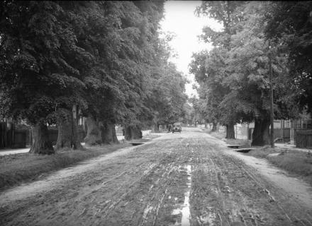 Polesie, lata 30. XX wieku, fot. szukajwarchiwach.gov.pl
