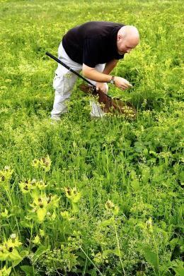 ogrod-botaniczny-7.jpg
