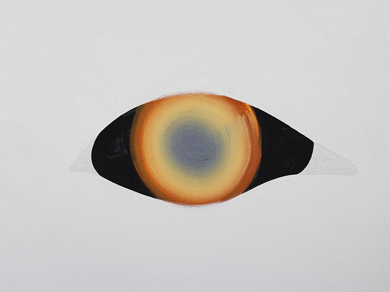 """Agata Bogacka, """"Kompozycja z Oczami""""(detal), 2015, fot. materiały prasowe WGW"""