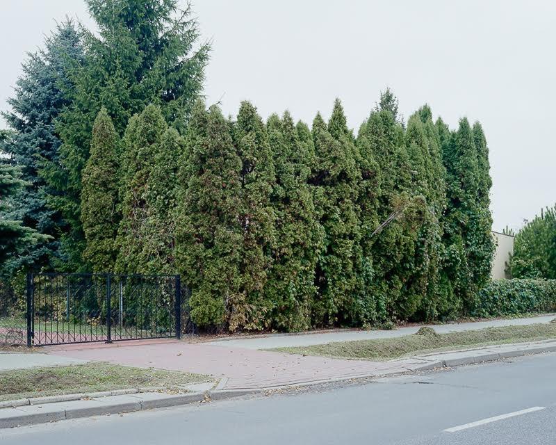 fot. Piotr Bekas, Fresh From Poland Zine #1: Distortion, dzięki uprzejmości autorów
