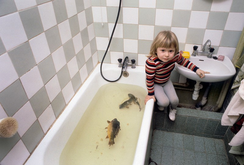 Chris Niedenthal, girl looking after Christmas Eve carps, photo: press material